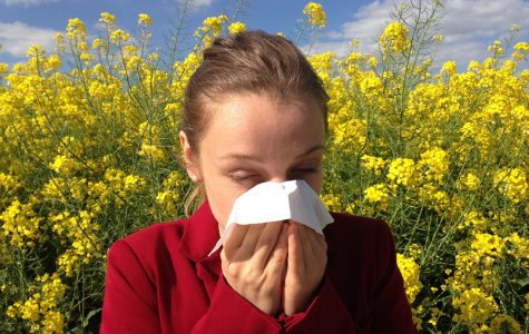 Asthma, along with diseases and food security, is related to climate change