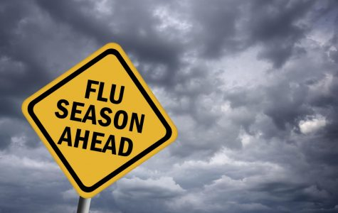 Winter is quickly approaching, that means Flu Season