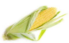Student expelled due to corn allergies (humor)