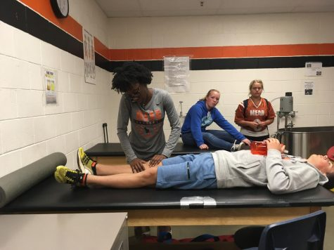Broncos' Demaryius Thomas goes to Texas