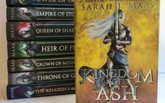 """Kingdom of Ash"" knocks people's socks off"