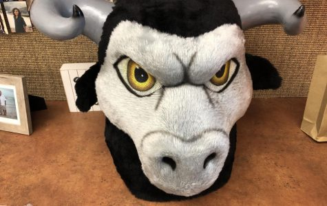 Mead High School's mascot gets an upgrade