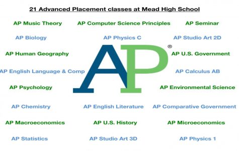 As of 2020, MHS offers a total of 21 AP courses.