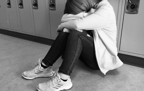 High school poses challenges that include friends, mental health, and school work in general.
