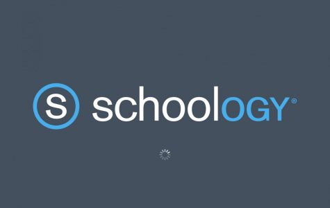 The swarming of Schoology has caused an increased usage rate of almost 400%.