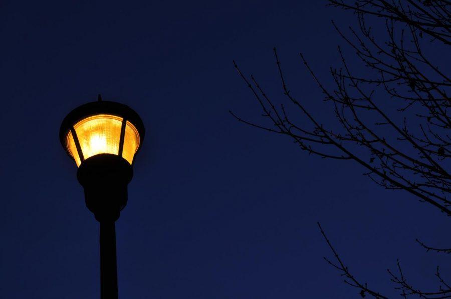 A street light below the dark sky.
