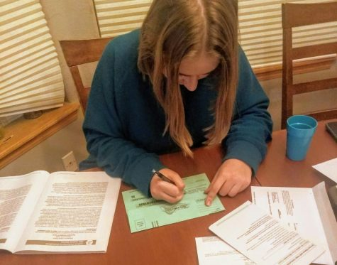 Mead senior Adah McMillan ('21) fills out her Colorado ballot, consulting her blue book as she goes.
